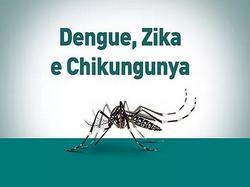 Prevenção à dengue, zika e chikungunya